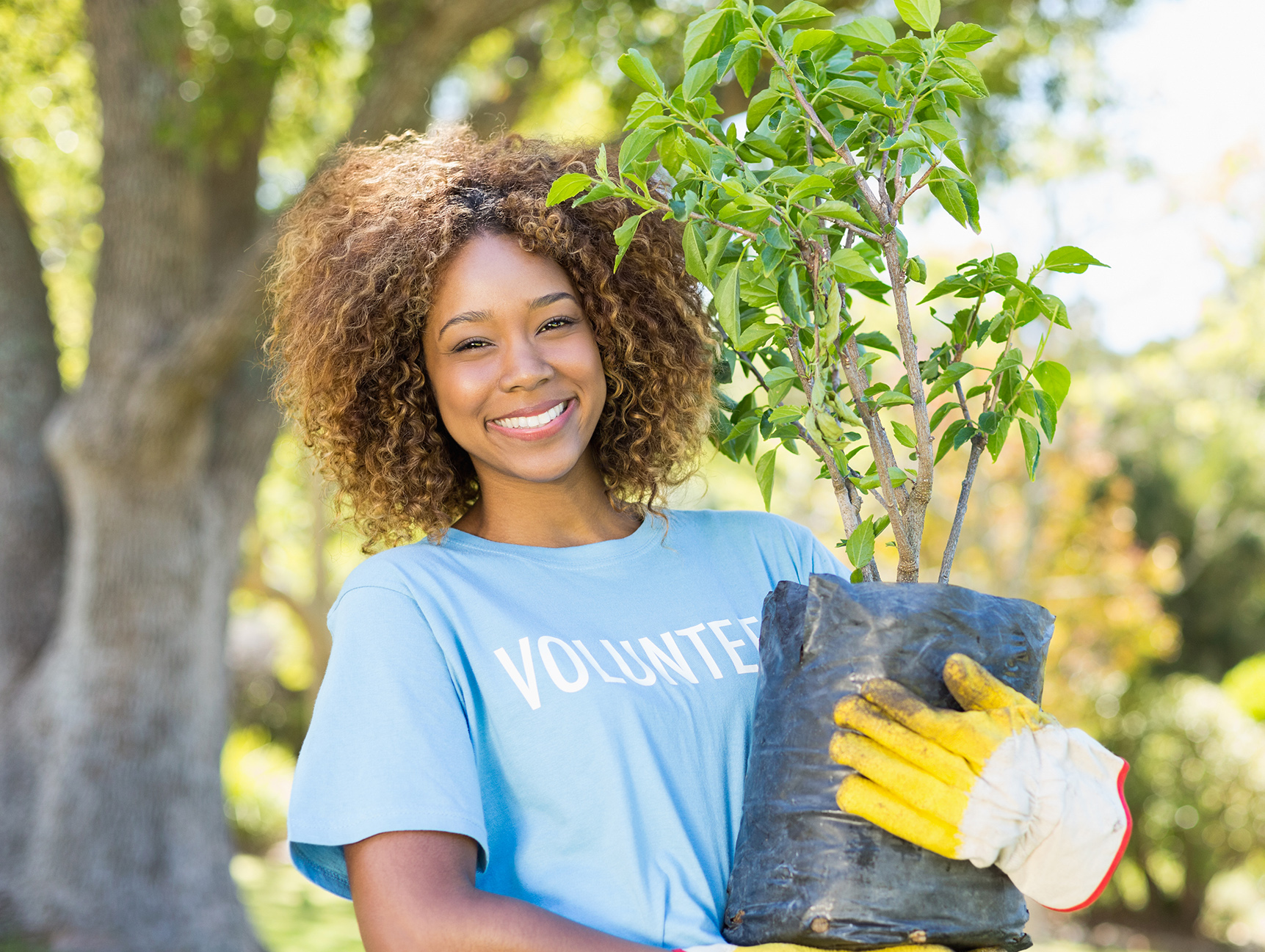women volunteering holding small tree